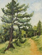 """If you go down to the woods today ..."" (plein air)"