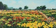 The Lily Farm, Thamesville (sold)
