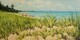 South Beach - As Good As It Gets (sold)