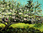 Old Apple Tree (sold)