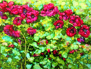 The Rose Bush (sold)