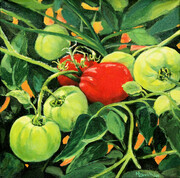 Tomatoes (sold)